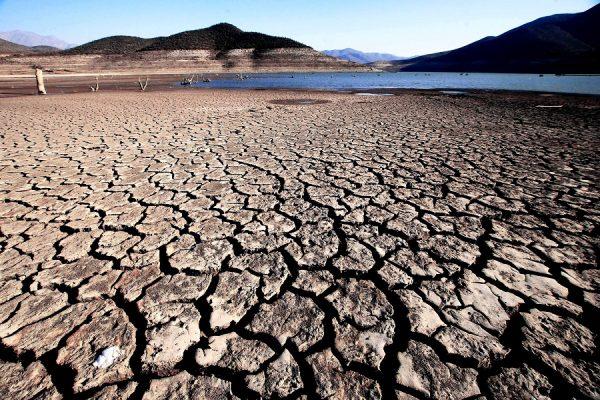 Precio de terrenos agrícolas se estanca en los últimos cinco años en zonas de aguda sequía